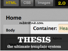 thesis themes 2.0