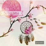 Lima Langkah Mengejar Impian Dengan PAKSA